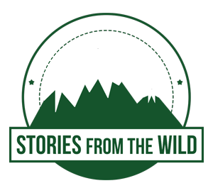 Stories from the Wild